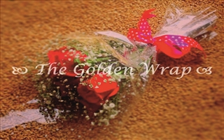 The Golden Wrap 015