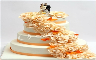 Wedding Cakes - Irish Coffee - 7 Kgs